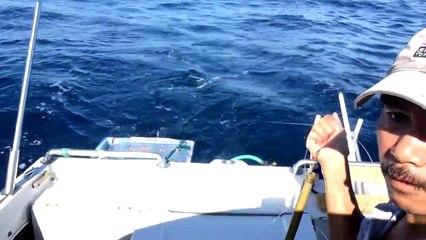 Crazy Fishing Câu Cá Nục ở Nước Mỹ ดู วิธีการ ตกปลา