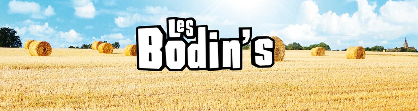 Les Bodins