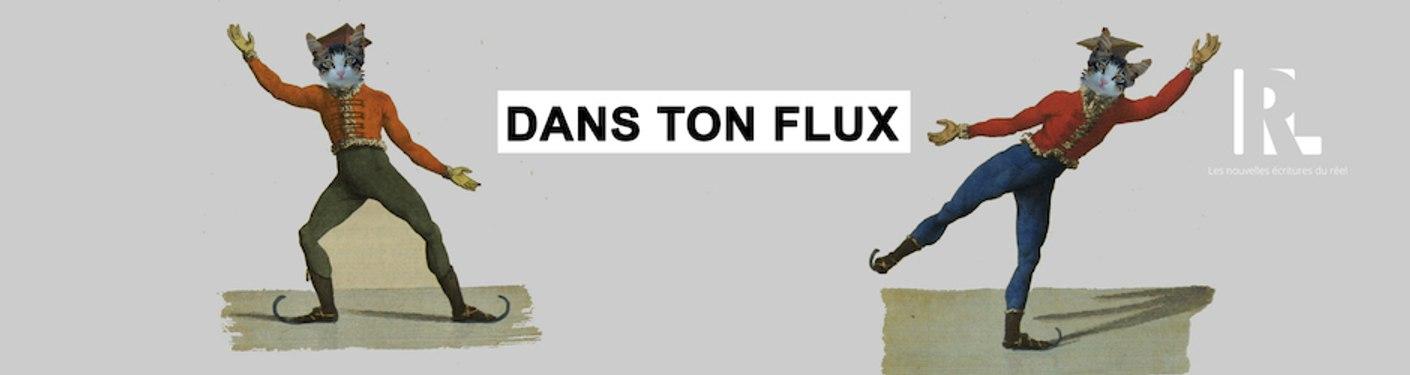 DansTonFlux