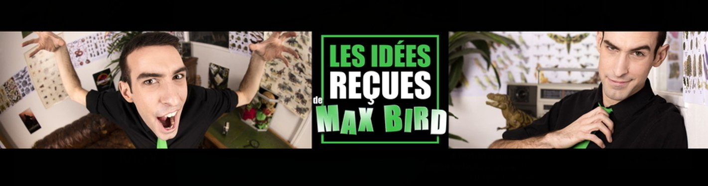 Max Bird