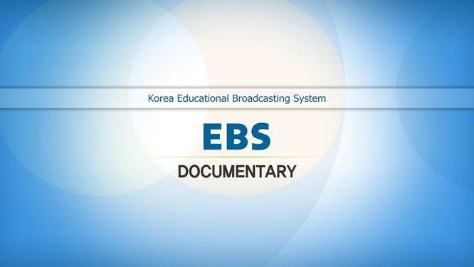 EBS Documentary