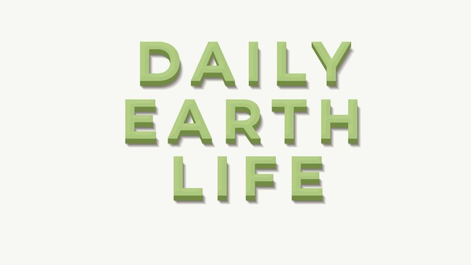 Daily-EarthLife