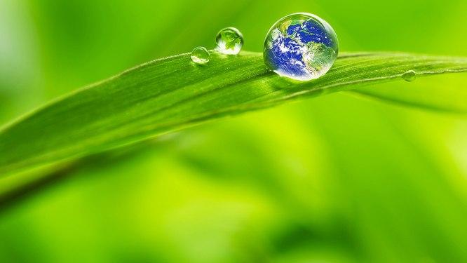 BBN Environment News