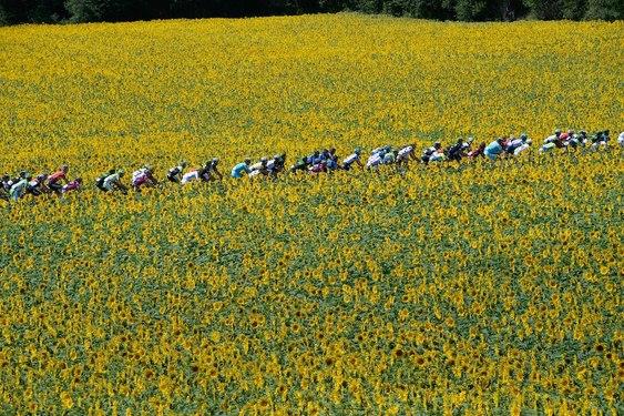 Tour de France (Canal Español)