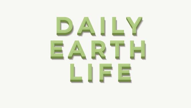 Daily-EarthLife