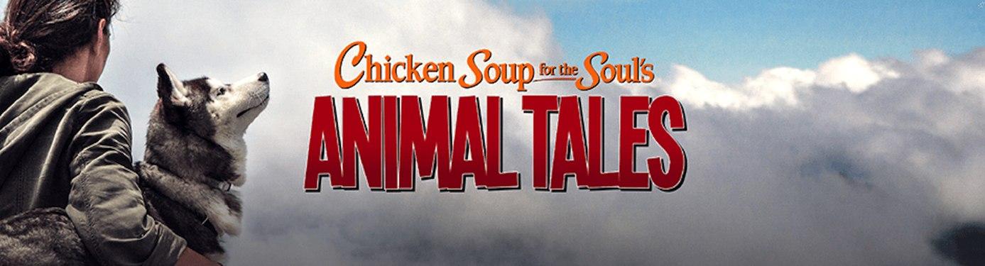 CSSE - Animal Tales