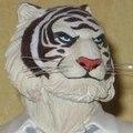 tigreblanc45