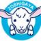 Zoushigaya Clinic
