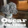 A Oscar