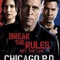 Chicago PD ~ Season 5 Online HD