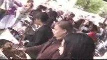 concert de maeva au steel drum avec le groupe zebda