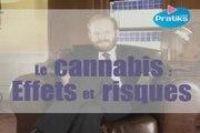 Le cannabis : Effets et Risques.