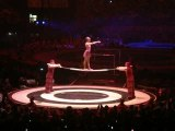 Acrobates - Circus