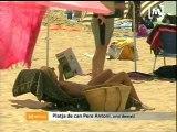 Ambient a les platges de Palma