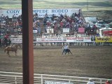 Rodeo #1 (Cody, WY, 4th of July, Stampede Rodeo)