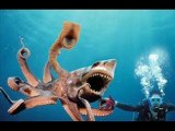 Sharktopus Movie Trailers HD