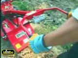 Comment préparer son gazon avant de le semer ?