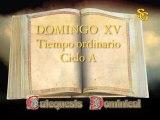 Videocatequesis Domingo XV t. ordinario-A