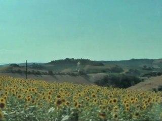Moresco - Marche - Italy