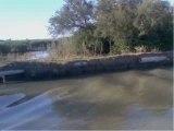 VNF, rives du canal du Rhône
