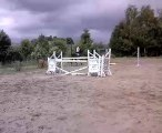 Sport Ponies Stable-Jument 1m54 né en 2000  sur parcours 135