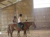 2 eme cours d'équitation de sylvie