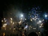 bouquet finale feu d'artifice fete de geneve 2009