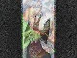 PMV Bleach -- Hinamori - Gin - Toshiro