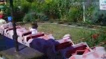 Oscar au parc du Bocasse