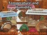 How To Choose Best Hermit Crab Habitat - Hermit Crab Home