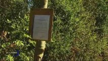 Alerte à la pollution de la rivière du Graon (Vendée)