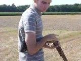 Ball-trap Pleurtuit 2009....2