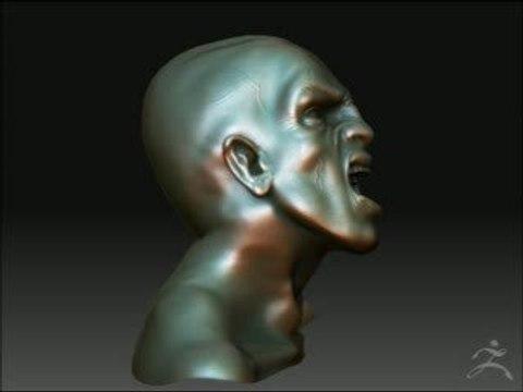 Modelisation d'un buste sous brush