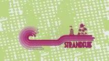 Strandfuif Day 1 - Front242 (Version non sous-titrée)