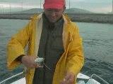 Lüfer avı İstanbul