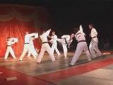 Demo de Taekwondo + Casse / Nuit des Arts Martiaux 2004