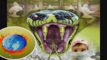 LLP    Grippe A H1N1 et Réchauffement global