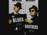 CELEBRITE 65-Les FRERES BLUES/The blues brothers