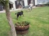 septembre26 2009 chyara oslo course jeu ballon