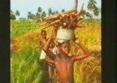 Jurafrica : Voyage à travers l'Afrique de l' Ouest