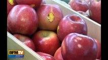 Les fruits et légumes français plus chers que les importations