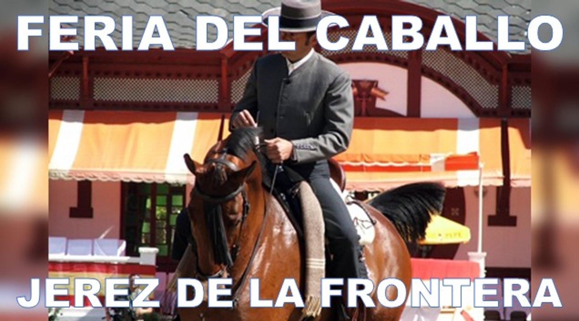 Démonstration de dressage à Jerez de la Frontera (musical)