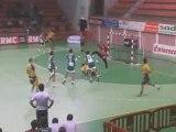 Nîmes tombe face à St-Raphaël (Coupe de la ligue handball)