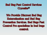 Bed Bugs Pest Control Pro Pest Control Bed Bugs Exterminator