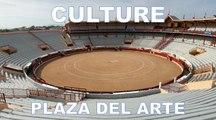 Plaza del Arte aux arènes de Bayonne