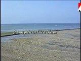 L'île d'Oléron, ses plages et ses bateaux