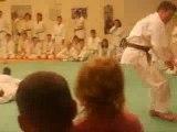 Chutes Avant Sautés Judo