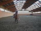 mercredi 14 oct / debut du pas espagnol à cheval !