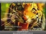 days inn hotel circle by seaworld video tour