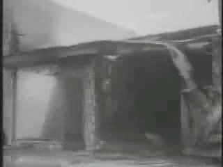 Les émeutes de Watts (1965)